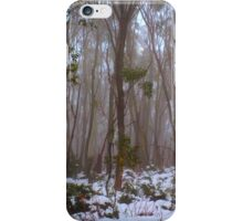 Snow Gums iPhone Case/Skin