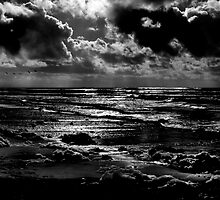 After the Storm by Shannon B