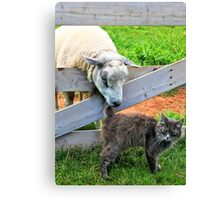 Do you have license to take picture? Canvas Print