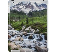 Mount Rainier View from Myrtle Falls iPad Case/Skin