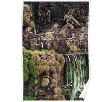 Iguazu Falls - a small section Poster