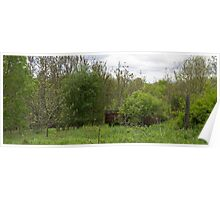 HDR Composite - Abandoned Farmstead Growing Up Poster