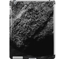 HDR Composite - Black and White Moss on Rock iPad Case/Skin