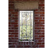 Iron window with holly Photographic Print