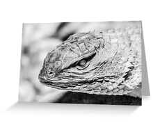Enter the Dragon Greeting Card