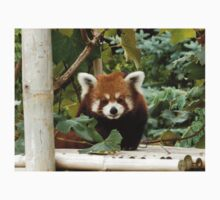 Red Panda Guy Kids Clothes