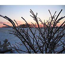 Gleaming at Sunset Photographic Print