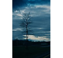 Dark skies and lonely tree Photographic Print