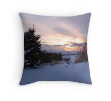 One Last Look Throw Pillow