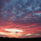 Kurri Sunrise by Peter Pevy
