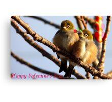 Happy Valentine's Day - Silvereye - NZ Canvas Print