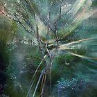 Spirit Within by silveraya