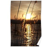 Sunrise at nearby lake #2 Poster