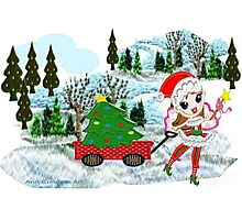 A Christmas Fairy in winter wonderland  Photographic Print