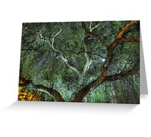 Moonlit Willow Greeting Card