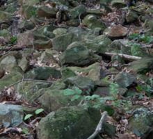 HDR Composite - Fallen Stone Wall Remains in Forest Sticker
