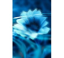 Submerged Blue Floral I Photographic Print