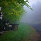 Postcard from Mt Wilson ~ #2 by Rosalie Dale