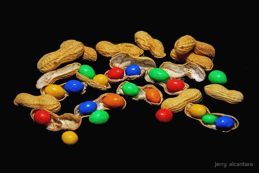 Are You Nuts? by jerry  alcantara