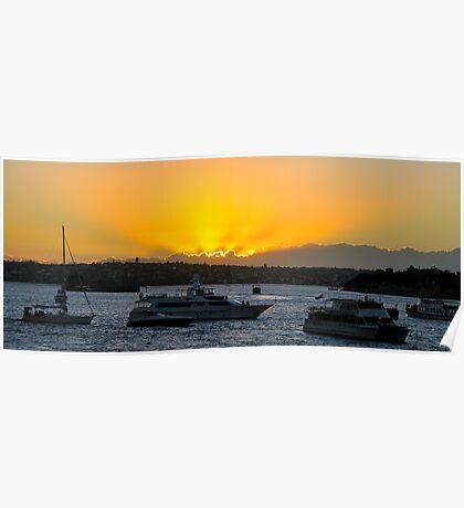 Golden Reflection, Sydney Harbour Dawn, Sydney Australia Poster
