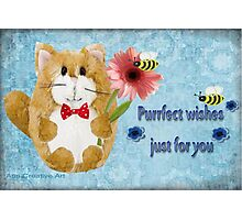 Purrfect Wishes Just for you Photographic Print