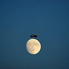 Planing the Moon by Philip  Rogan