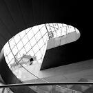 climbing spirals by Ashley Ng