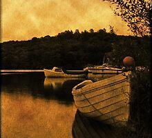 Loch Lomond Gloaming by KarenMcWhirter
