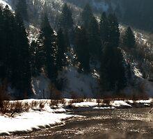 Provo River - Winter by Ryan Houston