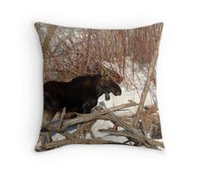 Moose - Provo River Throw Pillow