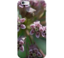 HDR Composite - Multiple Exposure Ghosting of Milkweed 2 iPhone Case/Skin