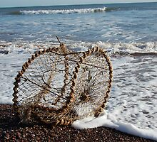 Creel lost on Teignmouth beach Jan 08 by sandrab