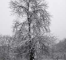 Crystal Palace Park, London by moorsd1
