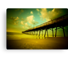 peering into the day Canvas Print