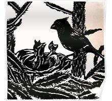 Mummy Bird Feeding Baby Birds  Poster