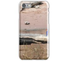 Distant kin iPhone Case/Skin
