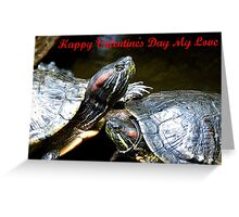 Happy Valentines Day My Love - Turtles NZ Greeting Card