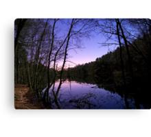 Moonlit Lake Canvas Print