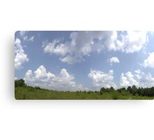 HDR Composite - Overgrowth in Nature Preserve Canvas Print