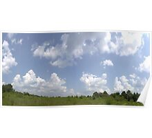 HDR Composite - Overgrowth in Nature Preserve Poster