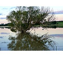 From Paddock to Lake Overnight! - Gore Flooding - Southland Photographic Print
