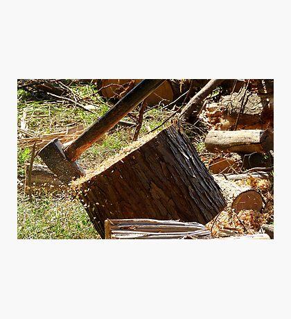 Flying Sawdust! - Chopping Wood - NZ Photographic Print