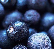 Frozen Berries by EimilesArt