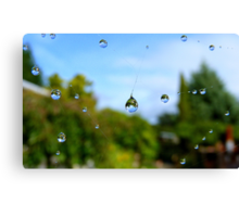 Floating Worlds! - Drops on Webs - NZ Canvas Print