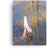 Breaking the Surface Canvas Print