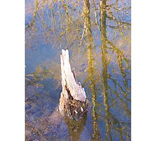 Breaking the Surface Photographic Print