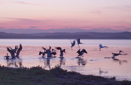 Sunset Again on Tuggerah Lake NSW  Australia by Beryl Withnell