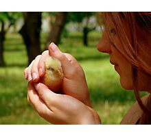 Ohh.. So Precious... - Baby Chick - NZ Photographic Print