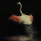 Dancing Flamingo by Peter Kurdulija