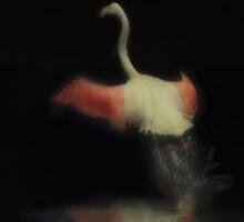 Dancing Flamingo by Peter Kurdulija